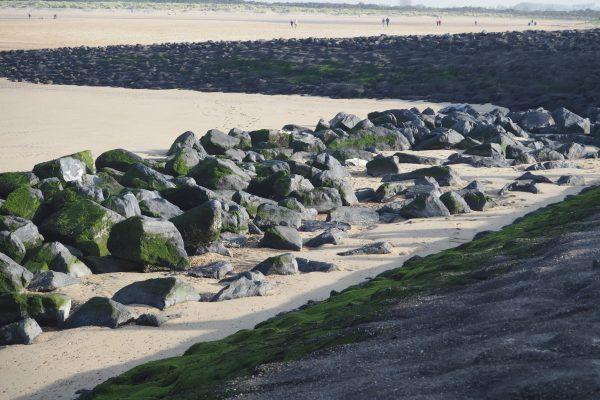 PB040099 600x400 - BVDP's jaarlijkse strandwandeling ging door in Cadzand