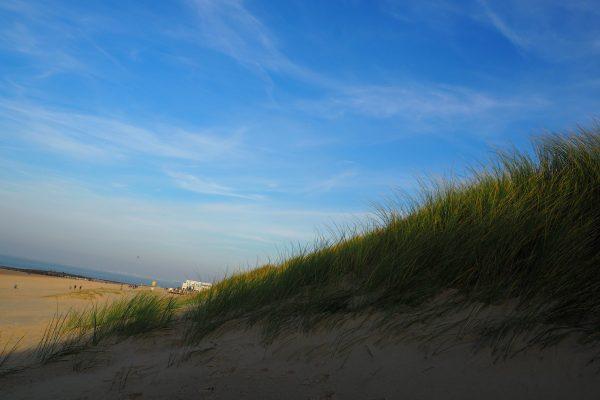PB040123 600x400 - BVDP's jaarlijkse strandwandeling ging door in Cadzand