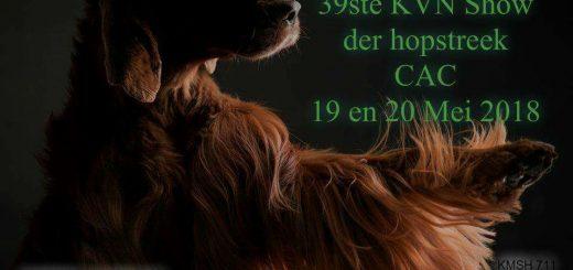 23434889 10159547869485174 5104998022040327718 n 520x245 - Dogshow Wieze 2018