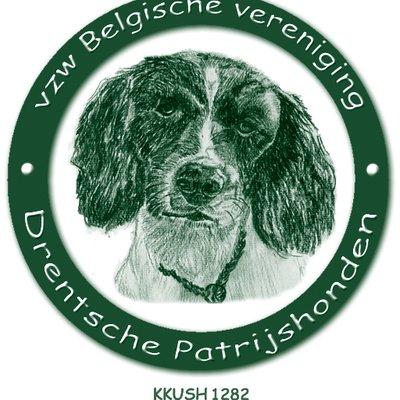 Pv1iZ6jh 400x400 - Rasspeciale Belgische Vereniging van Drentsche Patrijshonden 2019 is geslaagd!
