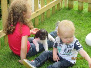 IMG 1678 300x225 - Puppy Info
