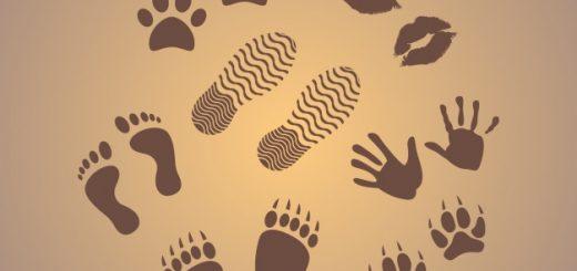 prints graphics 23 2147734064 520x245 - 15.000 steps!