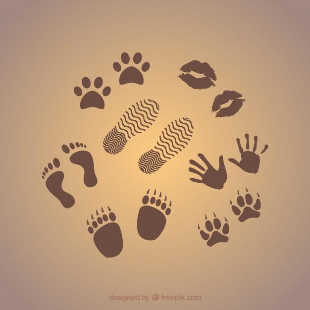 prints graphics 23 2147734064 - 15.000 steps!
