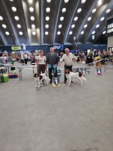 IMG 7949 225x300 - Dogshow results summer 2019😎