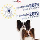 2019 160x160 - Eurodogshow Kortrijk 2019